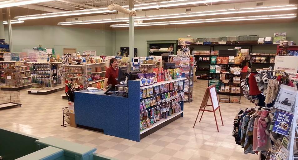 Critters Pet Shop - 566 Randall Rd. South Elgin. (Between Caputo s   Super  Target!) f490b60c06d2